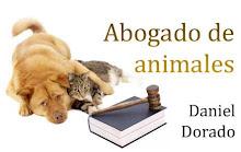 Abogado de Animales