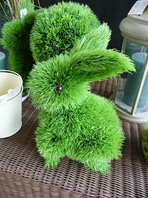 quand un lapin mange trop d herbe paris c t jardin. Black Bedroom Furniture Sets. Home Design Ideas