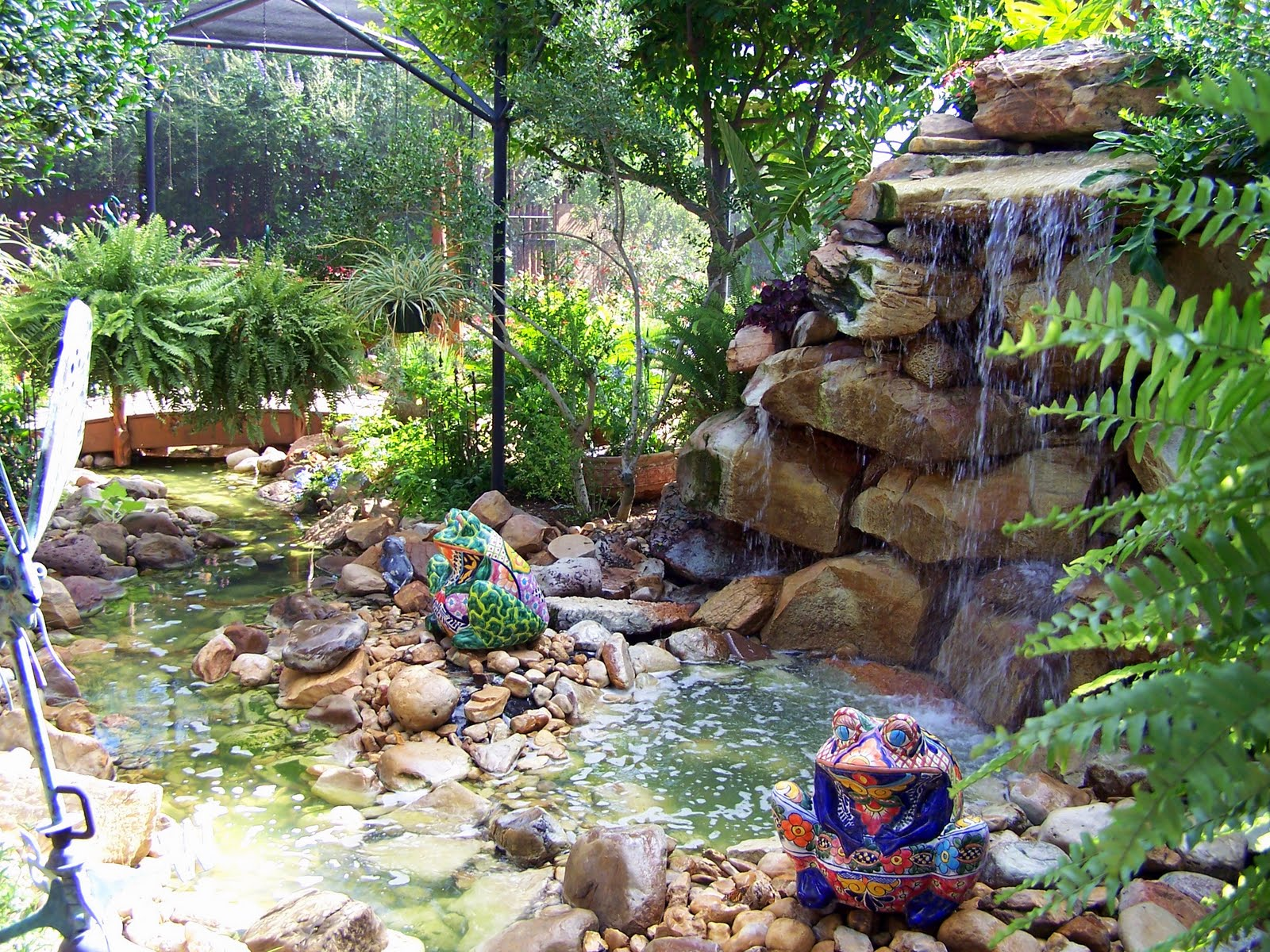 Texasdaisey creations water gardens for How to water a garden