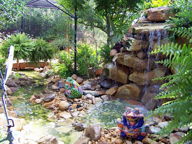 texasdaisey creations water gardens