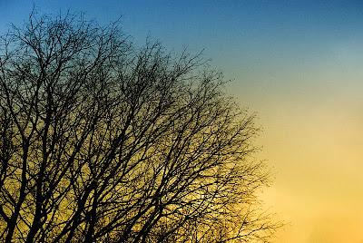 foto: Céu doirado