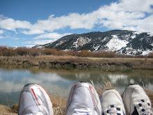 Walking on Sunshine in Jacksonhole Wyoming