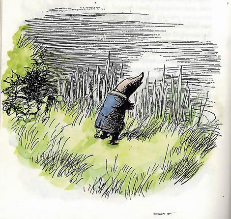 Mole from The Wind in the Willows