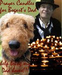 In Loving Memory of Bogart's Dad
