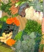 Verduras agroecológicas en el Mercado Bonpland
