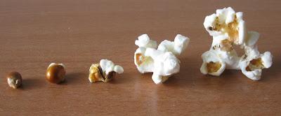 popcorn mameli 1