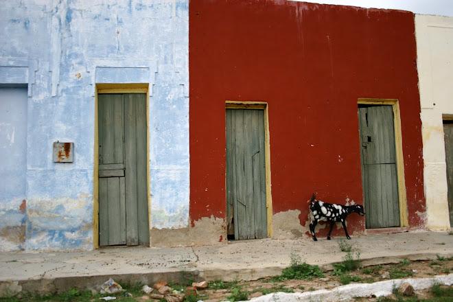 Casa de cabra - Tauá Ceará