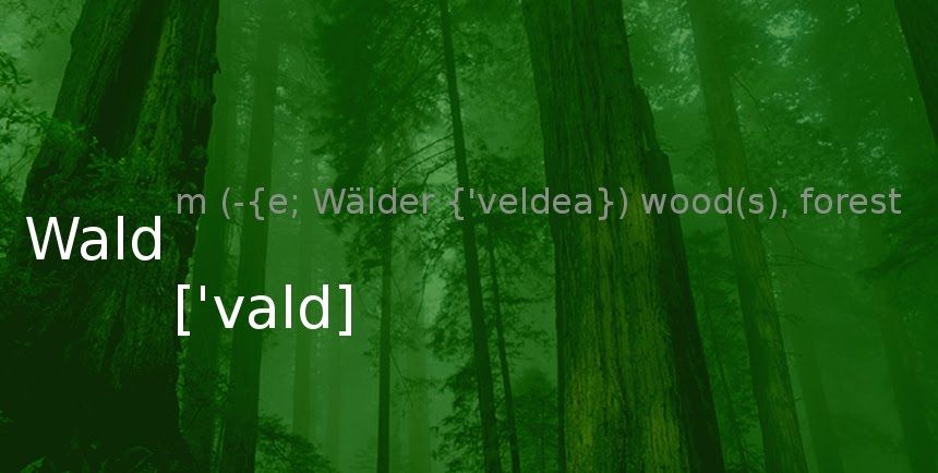 Wald [ˈvald] : Forest, mostly with trees