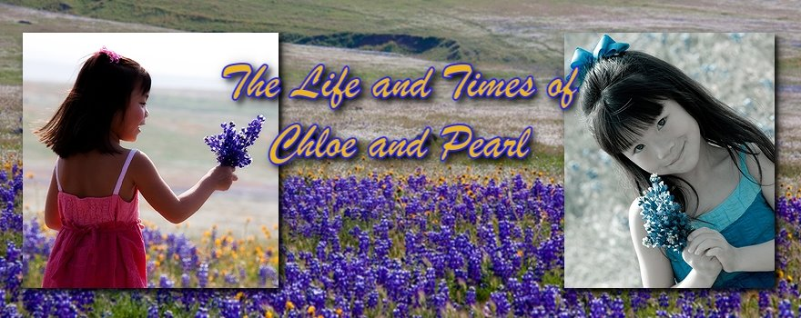 The Life & Times of Chloe & Pearl