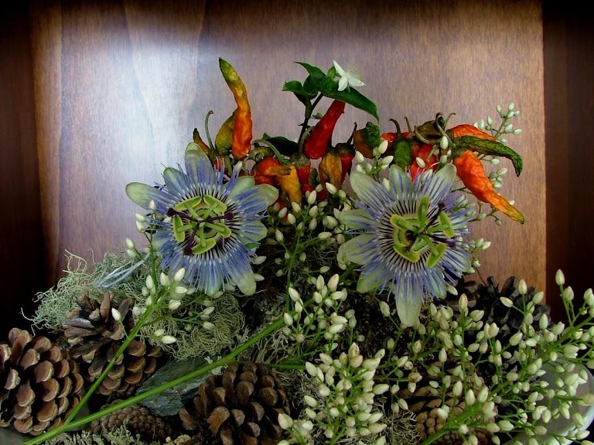 fiore della passione...con pizzico di peperoncino