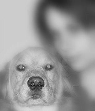 Eat My Puppy!