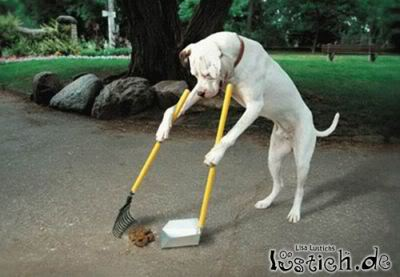 Dog CleAneR