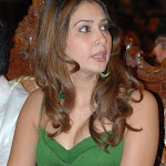 Kim Sharma Hot Unseen Photos | Sexy Babe Kim