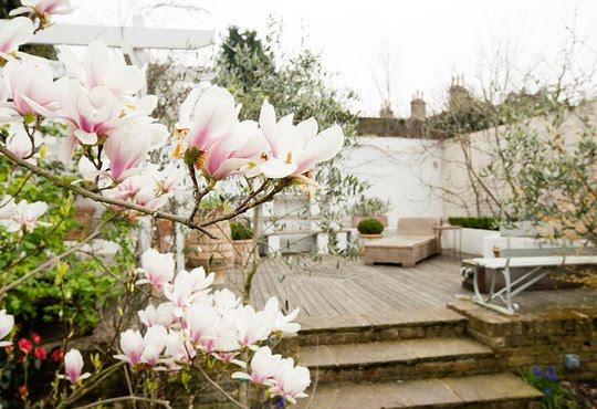 patio trasero con suelo madera idea para pequeño jardín