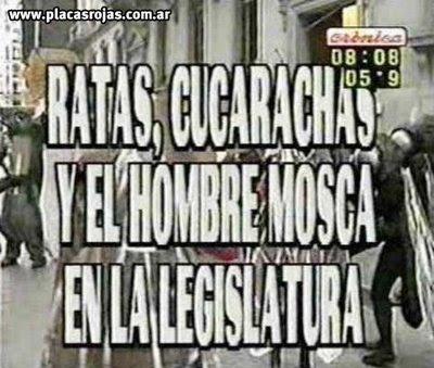 cronica tv