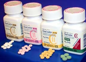 Comparison of oxycodone and hydrocodone.