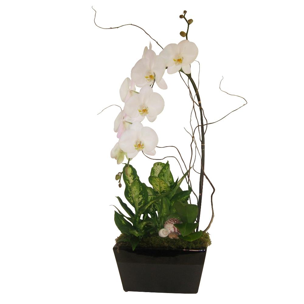 Fiori Floral Design: Mother\'s Day 2010