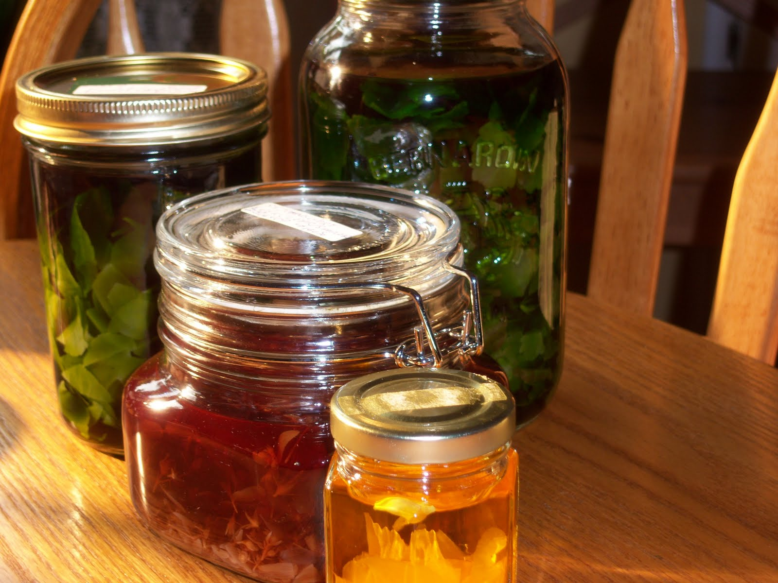 The Beauty and Magic of Herbal Tinctures