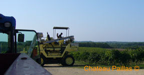harvest 2009 chateau paillas cahors malbec