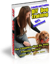 Step by step guide to train your dog...