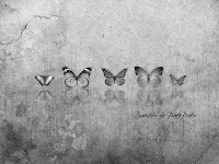 butterfly-black-and-white-abstract-design