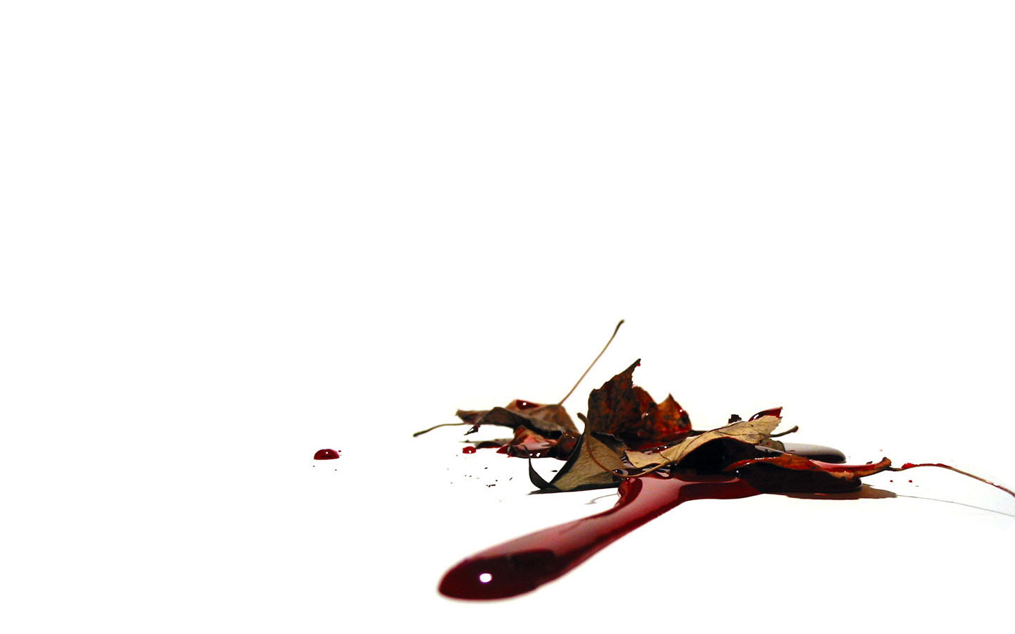 White Background Horror Wallpapers 1440x900
