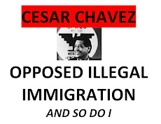 Cesar Chavez Opposed Illegal Immigration