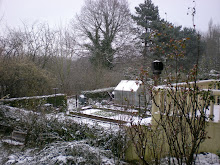 Snow in Pont