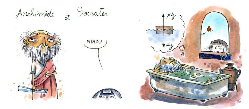 Le monde d 39 ileana archim de et socrates for A archimede