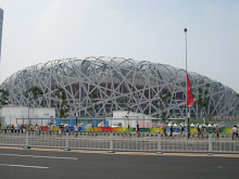 The Bird's Nest