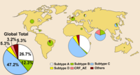 Global Distribution of HIV-1 Subtype