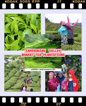 CAMERONIAN VALLEY CAMERON HIGHLANDS
