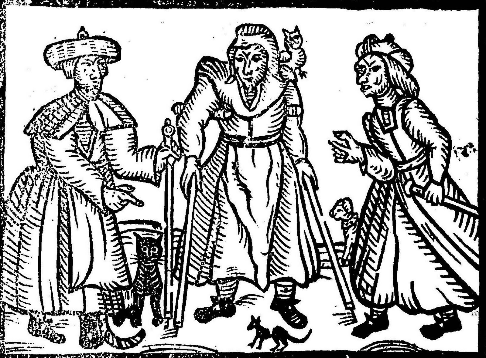 the witch hunts of the 16th century Free essay: the witch-hunts of the 16th century in pre-modern europe, was a very gruesome time in human history countless people were executed as they were.