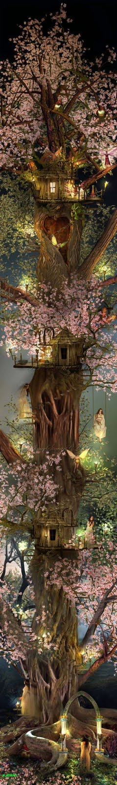 Árvore das Fadas