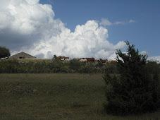 El paissatge canviant de la vall....