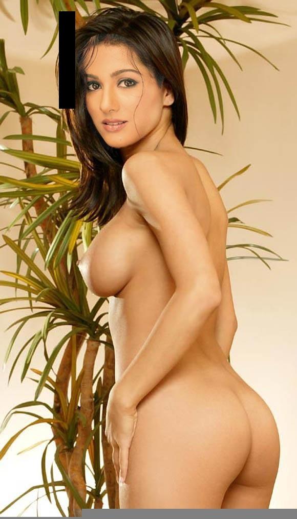 Amrita Rao Fake Nude