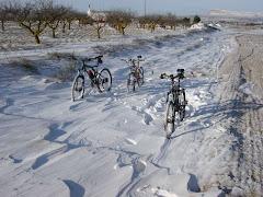 bicicletas fantasmas.... perdon bicicletas de unos fantasmas