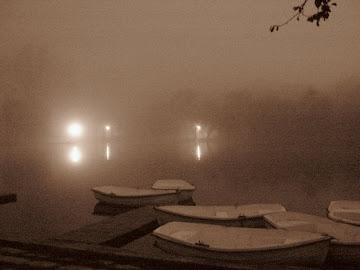 barci in ceata