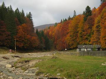 cabana la munte