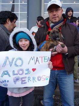los niños dicen NO A LA MATANZA DE PERROS