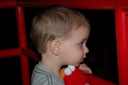 enthralled little boy