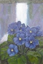 --------Violetas--------