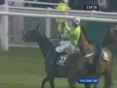 Angry Horse's Revenge at Aintree