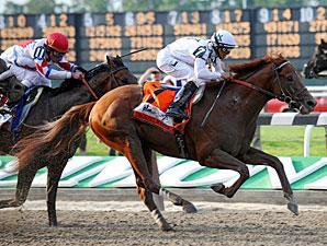 Drosselmeyer wins Belmont Stakes 2010