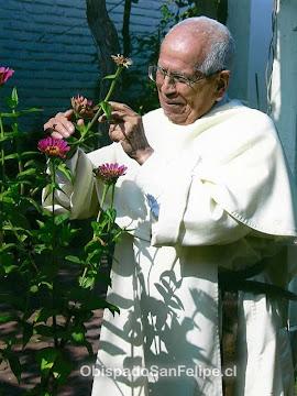 Biografía de Fr. José Beltrán Beltrán O de M.