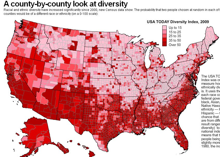 ethnic diversity in the usa essay