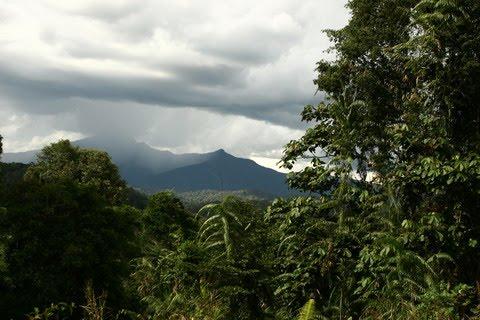 [pegunungan+muller.jpg]