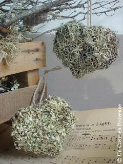 2 coeurs de lichen
