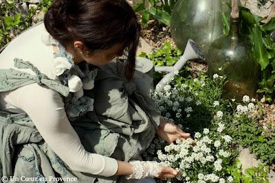 Parterre d'alyssum blanc, Chambre d'hôtes de charme Un Cœur très Nature