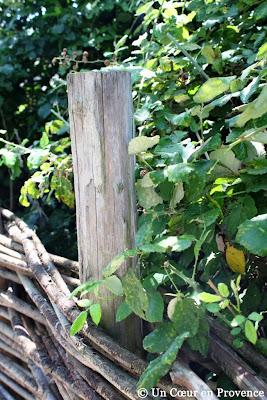 Détail du jardin extraordinaire La Chassagnette